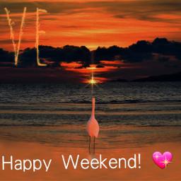 colorful summerend weekend freetoedit