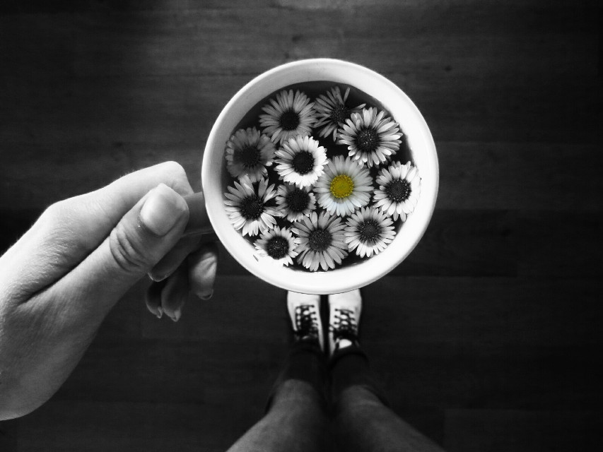 Dare to be different.   #photography  #blackandwhite  #flowers  #nature  #cupofflowers  #funny  #oldphoto