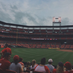 freetoedit stlouis cardinals baseball love