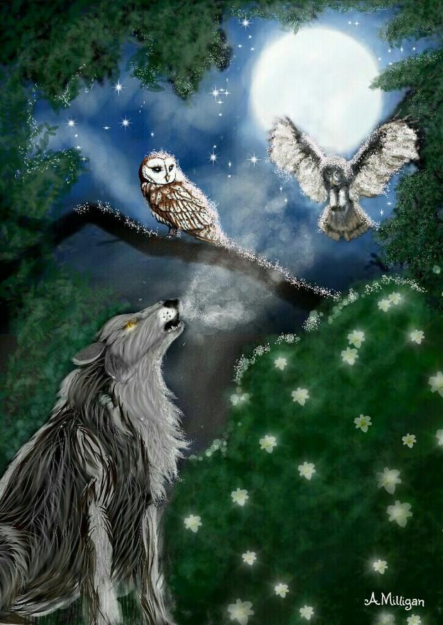 "#wdpnightsky  ""Howl in the night ""   #colorsplash  #forest  #petsandanimals  #owls  #wolf  #flower  #nighttime  #moon  #draw 😊❤💚"