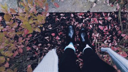 outside autumn myfavourite fallcolors leaves freetoedit