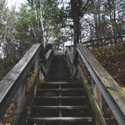 freetoedit stairs photography