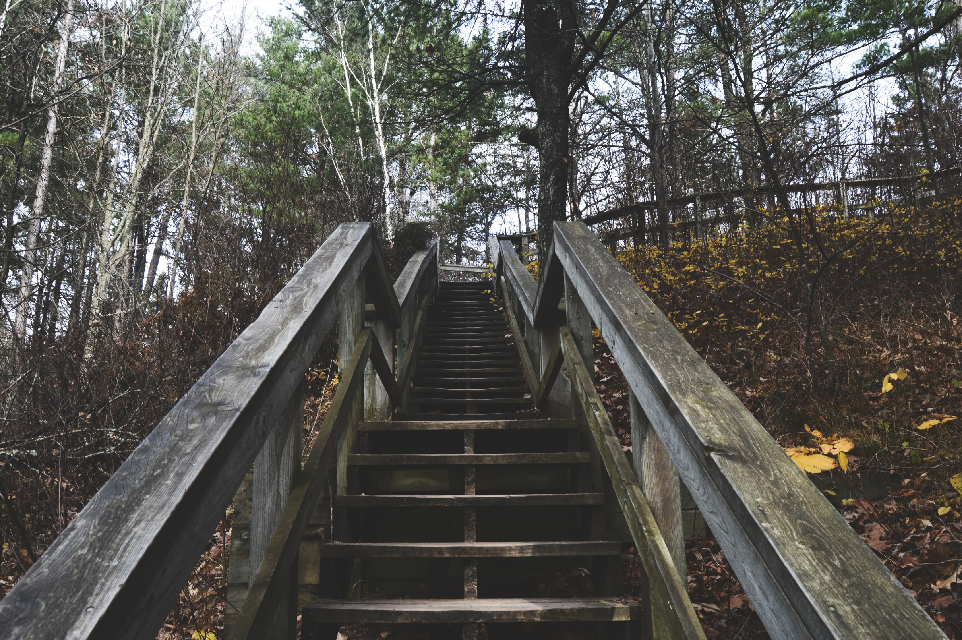 #FreeToEdit #stairs #photography