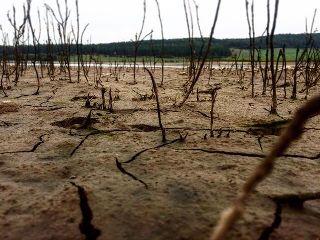 dirt lake