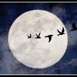 photography sky night art