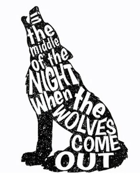 #harrystyles  #harry styles  #harry  #styles  #wolf  #wolves  #wolfs  #art  #artistic