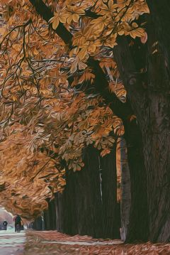picsart nature trees tree autumn
